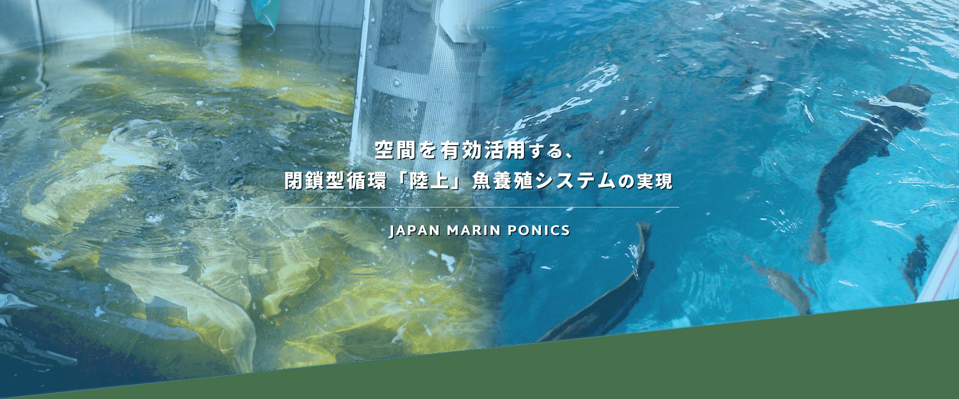 空間を有効活用する閉鎖型循環「陸上」魚養殖システムの実現