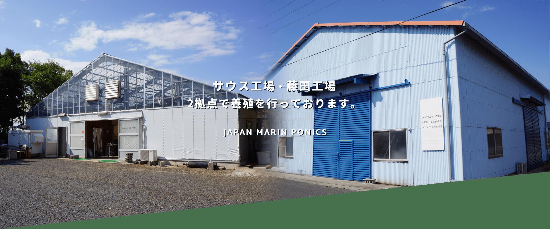 サウス工場・藤田工場2拠点で養殖を行っております。